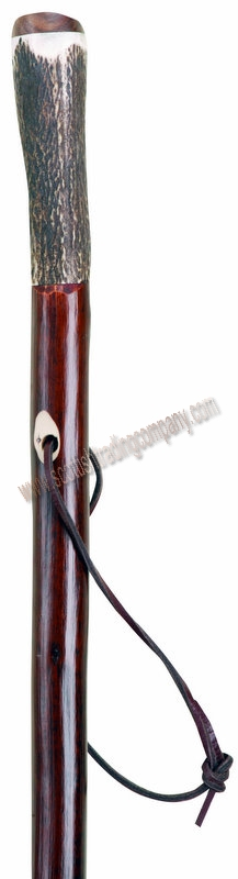Stag Horn Hiking Stick - Click Image to Close