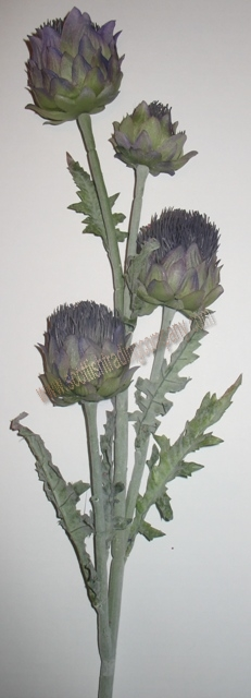 Four Large Thistles