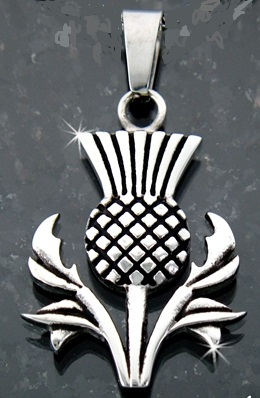 Scottish Thistle Pendant